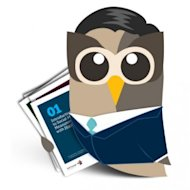 Is your Blog Easy to Find? image hootsuite owl1