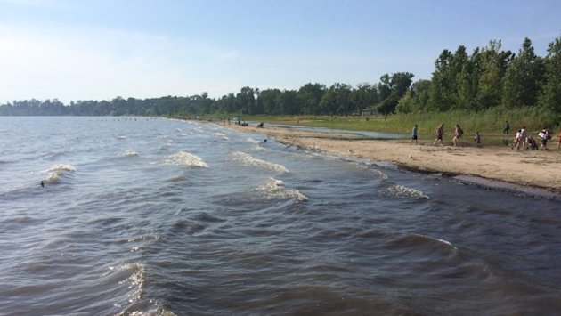 1 Windsor-Essex beach closed, swimming not recommended at 6 others