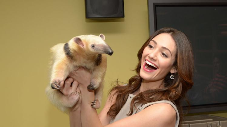 Emmy Rossum, Regina King, Harlem Globetrotters and Animals on VH1 Big Morning Buzz Live with Carrie Keagan