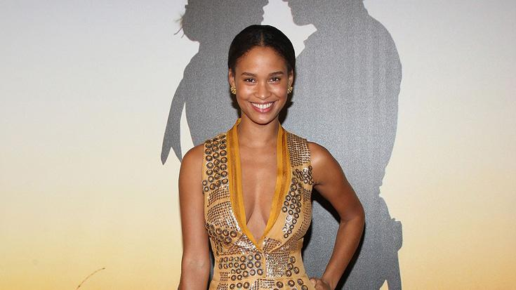 MoMa film benefit gala 2008 Joy Bryant