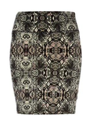 The Snakeskin Skirt