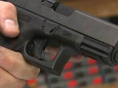 Task Force Expected to Crack Down On Gun Violence