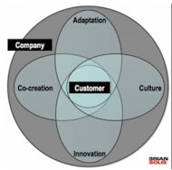 Top 5 Reasons Why Customer Centric Efforts Fail image Customer Centricity 300x297