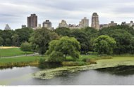 Maxidonazione a Central Park: 100 milioni dollari da manager hedge fund
