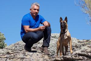 Cesar Millan Gets New Nat Geo Wild Dog-Whispering Show, 'Cesar 911′