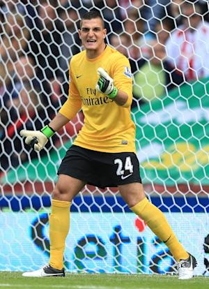 Arsenal's Vito Mannone is set to make his return to Champions League action