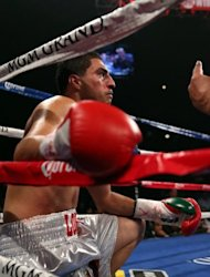 Josesito Lopez receives the count from the referee during his WBC super welterweight title fight against Canelo Alvarez on September 15. Alvarez had Lopez bleeding from the nose and mouth as the referee stopped the fight with 5 seconds remaining in the fifth round