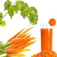 Carrot Juice Benefits for Skin