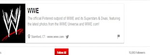 Best Toy Brands On Pinterest image WWE7