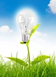 Instigate Insight: A Constructive Conspiracy image light bulb grass2