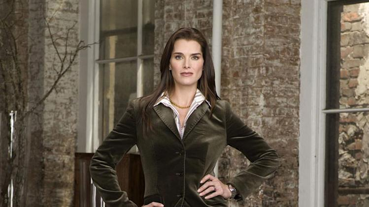 Brooke Shields stars as Wendy in Lipstick Jungle.