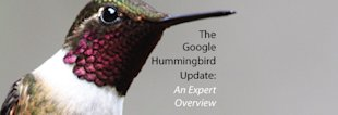 The Google Hummingbird Update: An Expert Overview image The Google Hummingbird