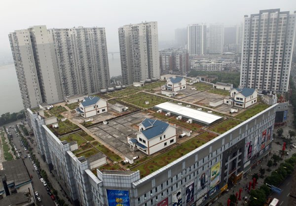 Houses displayed on a shopping mall rooftop in China. (via China Daily)