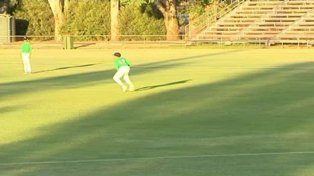 Orange junior cricket finals