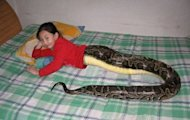 'Thailand's Snake Girl' Mai Li Fay Post Goes Viral, Declared Hoax