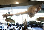"A giant Gollum creature from ""The ""Hobbit"" movie catches a fish on the ceiling of Wellington airport on October 31, 2012. The producers of ""The Hobbit"" movies have rejected allegations from animal rights group PETA that animals have died during the making of the highly anticipated Tolkien trilogy in New Zealand"