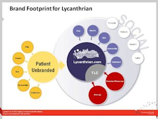 Learn What Makes a Content Plan Successful by Taking One Apart image content plan lycantrian