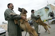 Iranian police trainers play with their sniffer dogs, in the easrn city of Zahedan, on December 2, 2003. Guard dogs, sheep dogs and hounds have always been acceptable in Iran, but the soaring number of pets acquired by a middle class keen to imitate Western culture has alarmed the authorities in recent years