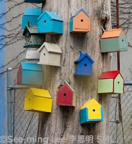 Six Reasons Twitter Might Not Be for You image Birdhouses