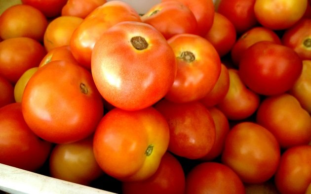 Did you know tomatoes were sold as medicine in the 1830s?