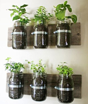 Wall-mounted Mason Jar Planters