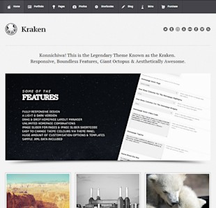 5 Top Premium WordPress Themes For Business image kraken wordpress theme