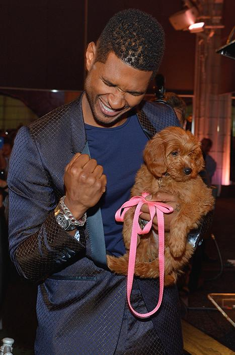 Meet Usher's Puppy: An Adorable $12,000 Goldendoodle!