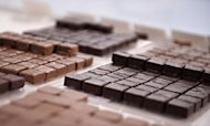It's Official: Chocolate Helps You Lose Weight