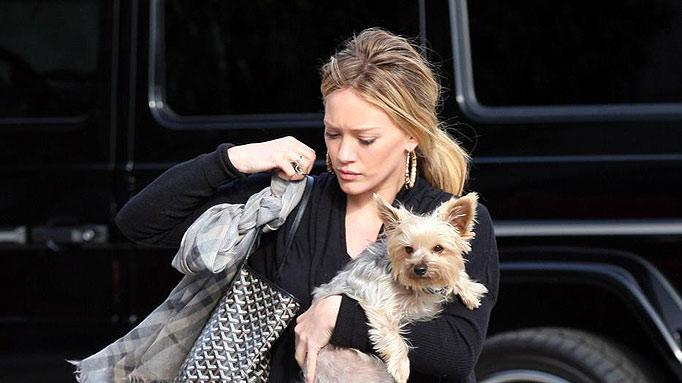 Duff Hilary With Dog