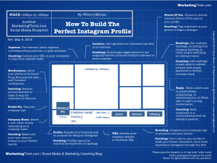 Infographic To Build The Perfect Instagram Profile image Perfect Instagram Profile1
