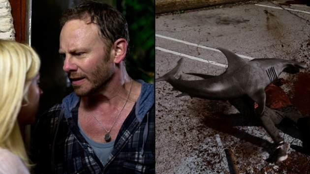 Tara Reid and Ian Ziering in Syfy's 'Sharknado' -- Syfy