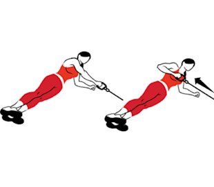 Side Plank and Row