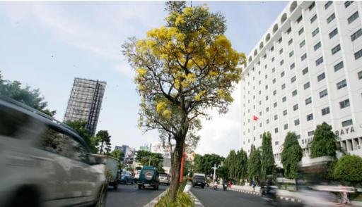 Surabaya Kota Masa Depan
