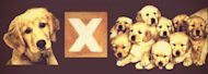 How to Multiply Your Webinar ROI: Repurpose Your Webinar Content image puppies filter