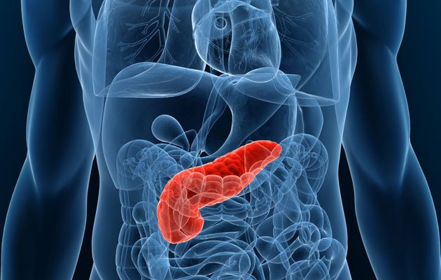 The Singapore government has put in place a new subsidised pancreas transplant programme (Thinkstock photo).