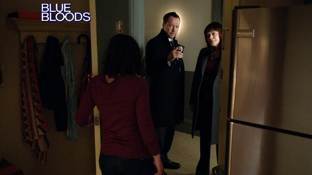 Blue Bloods - Friends With Benefits