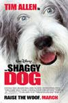 Poster of The Shaggy Dog