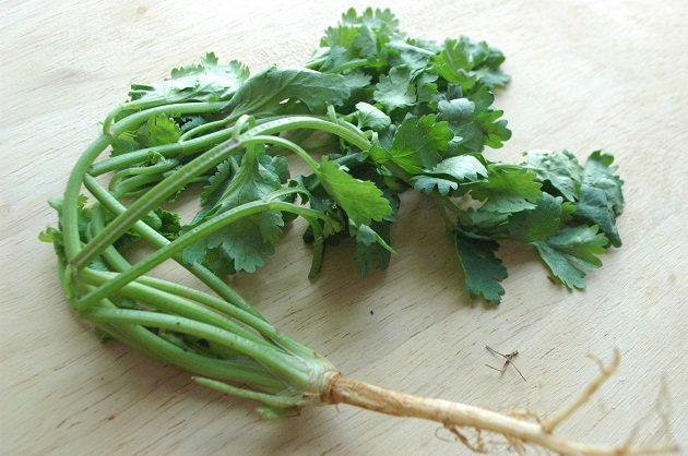 Are you a coriander hater?