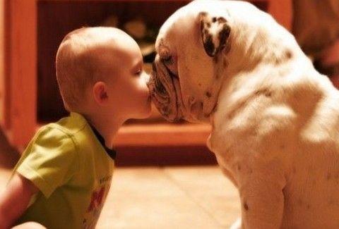 ΘΑ ΛΙΩΣΕΤΕ! Μικροί μπόμπιρες φιλούν τα αξιολάτρευτα σκυλιά τους!(Photos)