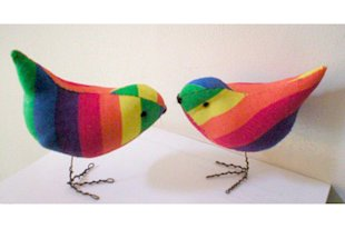 Rainbow Lovebirds