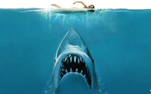 Swim or Drown: What We Can Learn From Sharks image jaws