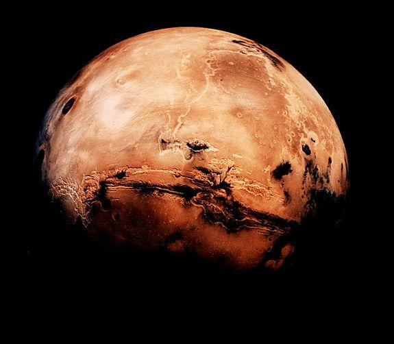 Are We All Martians? Tool Could Help Detect Earth-Like Life on Mars