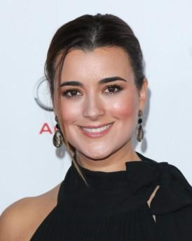 Cote De Pablo Joins Chilean Miner Movie 'The 33′ In First Post-'NCIS' Gig