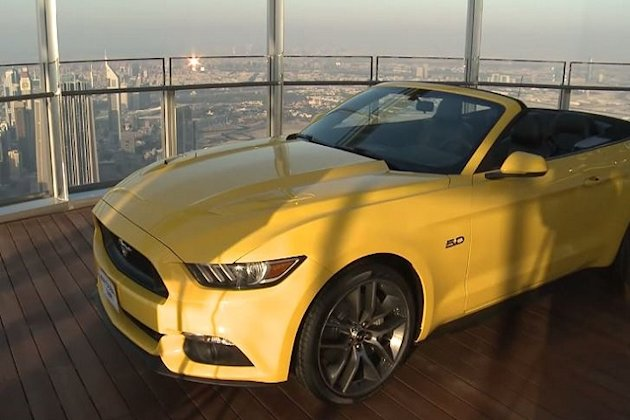 Dubai Mustang photo