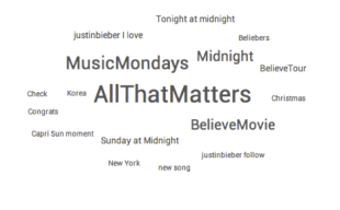 Who Are Beliebers, What Do They Have to Say & Why Do We Care? image bieber1