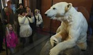 Knut Model Goes On Display In Germany