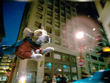 Underdog (voiced by Jason Lee ) in Walt Disney Pictures' Underdog