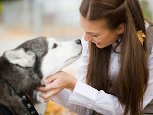 woman petting husky dog