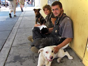 Homeless teens with multiple dogs