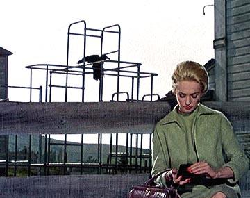 Tippi Hedren of Universal's The Birds